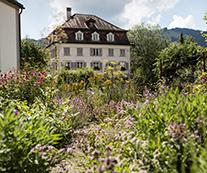 Pflanzvorschläge, Bepflanzungen, Pflege der Bepflanzungen, Kräutergärten, Wildstauden, Staudenansaaten