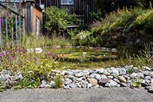 Feucht-Biotope, Bachläufe, Brunnen aus Naturstein oder Stahl, Schwimmteiche bauen planen und umsetzen